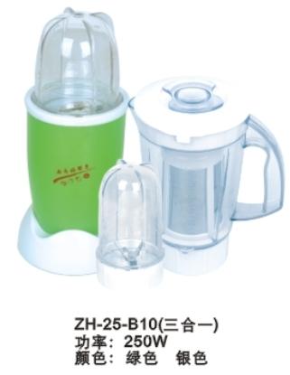 ZH-25-B10