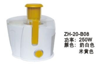 ZH-20-B08