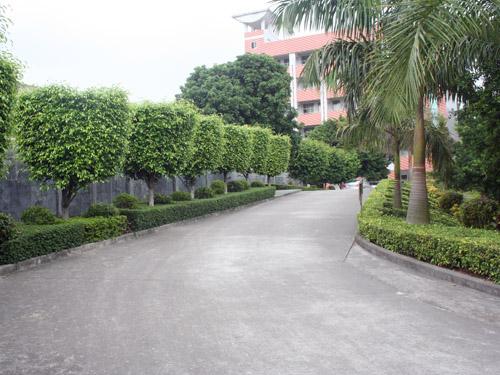 园林设计,园林施工,亭台水榭,鱼池假山,公园,厂区,道路绿化,小区,别墅