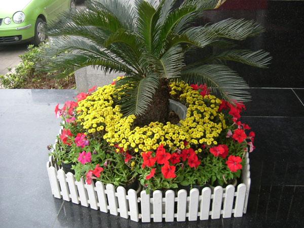 私家花园设计|屋顶花园|厂区绿化|植物租摆 公司主营:园林景观设计,园
