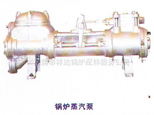 锅炉蒸汽泵