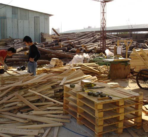 木材|东莞市洪梅建凌木材纸品材料包装厂
